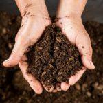 Альтернатива палінню листя – компост!