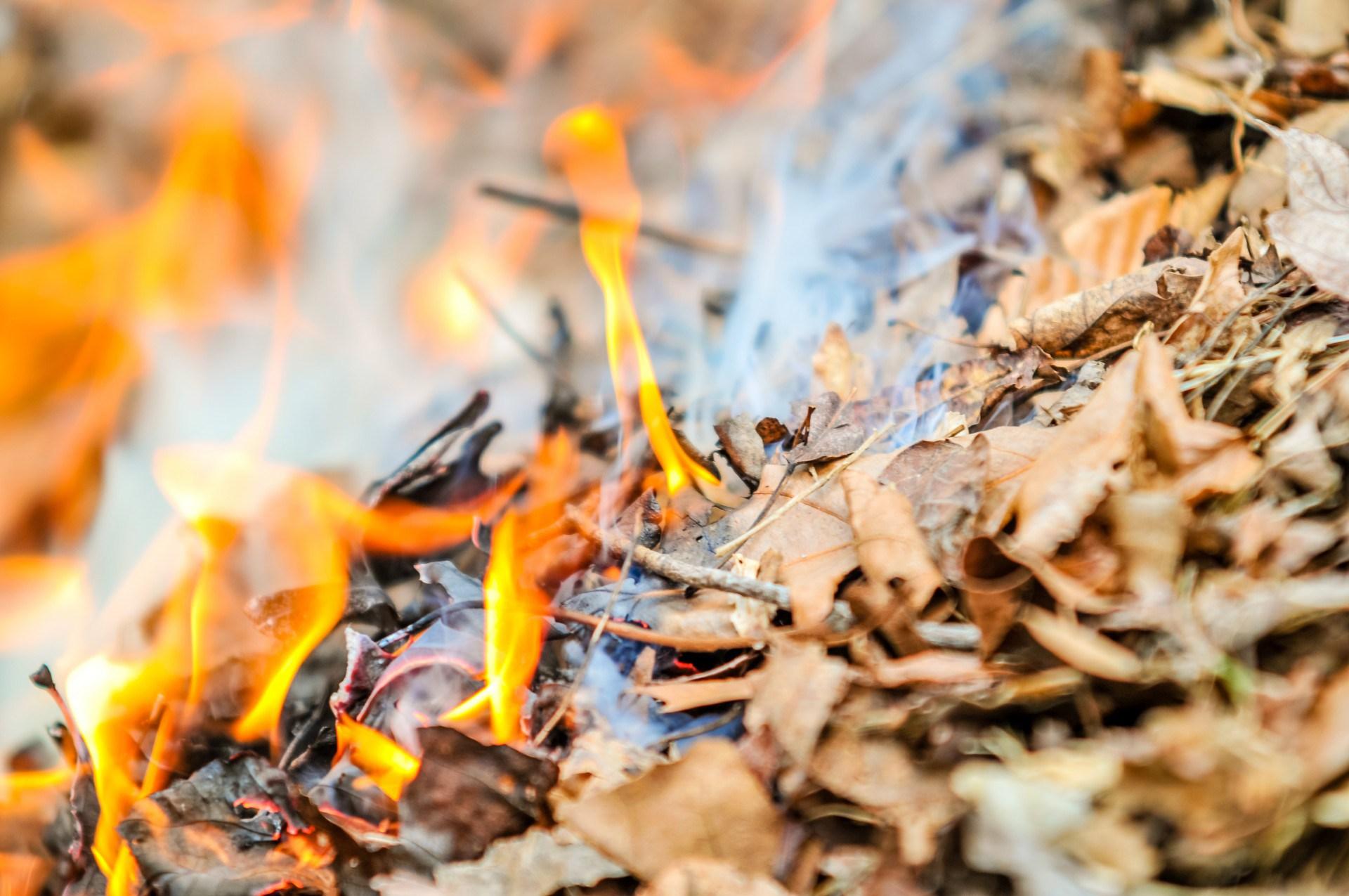 burning-fire-spalyuvannya-lystya-suhe-pozhezha-goryt.jpg