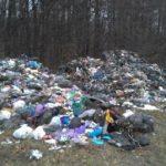 Екологічна інспекція виявила дрогобицьке сміття в Перемишлянському районі