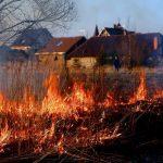 Чим небезпечне спалювання трави і як з цим боротися? DEZTOP