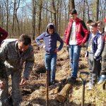 Вчимося цінувати природу та висаджувати дерева///Акція від дрогобичан (ВІДЕО)
