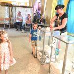 На Львівщині, станом на 16 годину, явка становила понад 32%