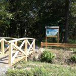 Нова локація для відпочинку на межі Дрогобицького та Стрийського районів (ФОТО)