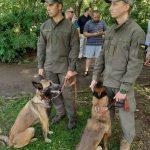 У Львові нагородили собак, які виконували бойові завдання на Донбасі