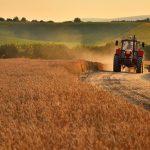 Чи підтримують українці продаж землі? (ВІДЕО)
