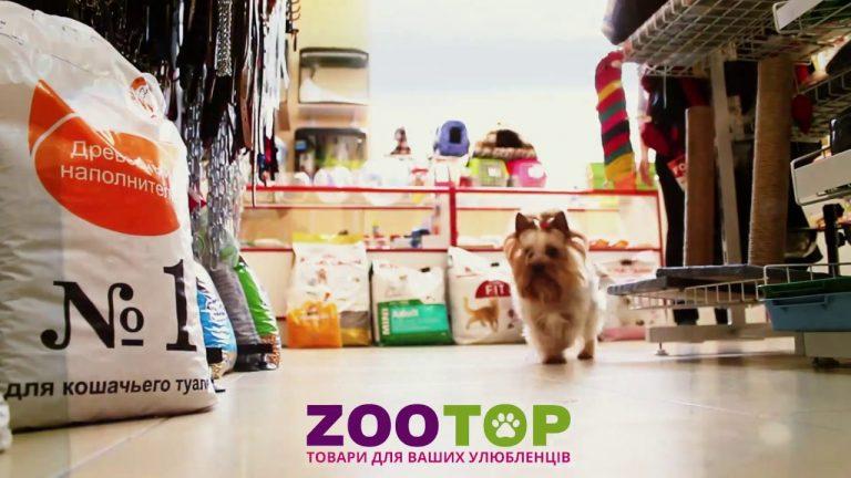 zootop2-768x432-1.jpg