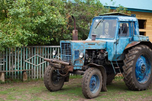 depositphotos_305839214-stock-photo-blue-tractor-belarus-pasture-for.jpg