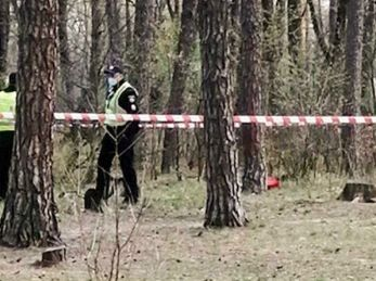 У Дрогобичі громаді повернули частину лісу, яку незаконно взяв у користування підприємець